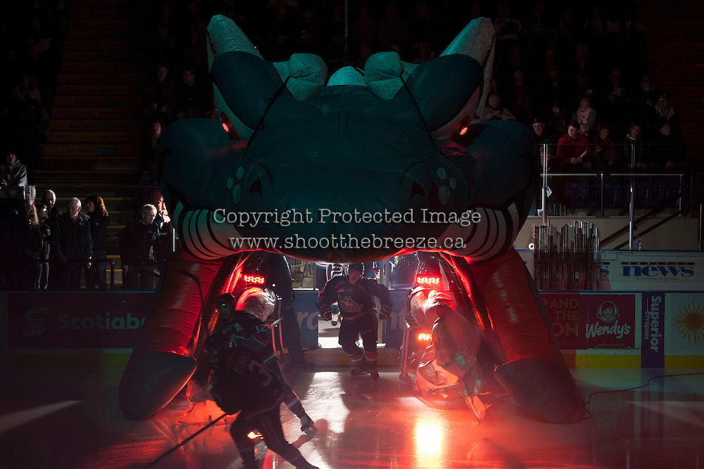KELOWNA, CANADA - NOVEMBER 20: Cole Martin #8 of the Kelowna Rockets enters the ice against the Victoria Royals on November 20, 2013 at Prospera Place in Kelowna, British Columbia, Canada.   (Photo by Marissa Baecker/Shoot the Breeze)  ***  Local Caption  ***