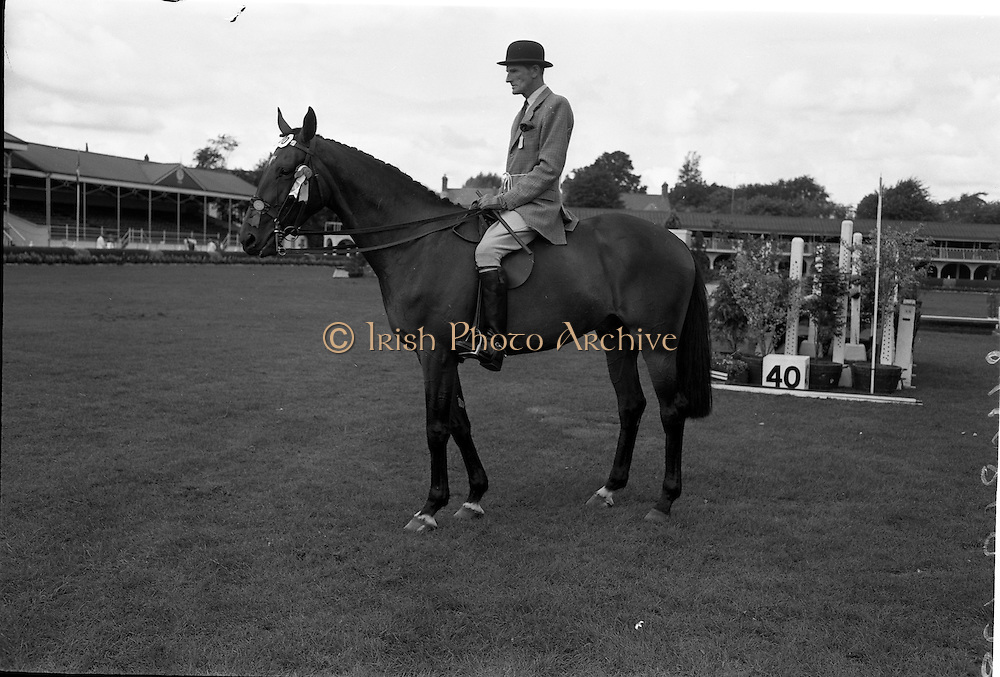 """08/08/1962<br /> 08/08/1962<br /> 08 August 1962<br /> Dublin Horse Show at the RDS, Ballsbridge, Wednesday. <br /> Picture shows """"Badna Bay"""", a brown 4 year old gelding, owned by the Duchess of Westminster, Bryanstown, Maynooth, Co. Kildare and shown by Capt. E. Glen Browne, Master of the Hunt, Cork. """"Badna Bay"""" won Supreme Hunter Champion of the Dublin Horse Show."""
