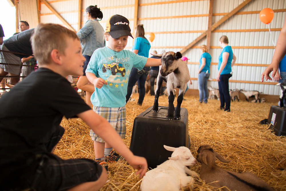 Tristan Keenan(3), centre, pets a goat during the Breakfast on the Farm event near Shedden, Ontario, Saturday, June 24, 2017.<br /> Farmers Forum/ Geoff Robins