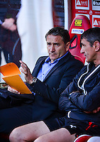Philippe MONTANIER - 16.05.2015 - Reims / Rennes - 37eme journee de Ligue 1<br />Photo : Dave Winter / Icon Sport