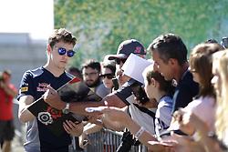 July 29, 2017 - Budapest, Hungary - Motorsports: FIA Formula One World Championship 2017, Grand Prix of Hungary, ..#26 Daniil Kvyat (RUS, Scuderia Toro Rosso) (Credit Image: © Hoch Zwei via ZUMA Wire)