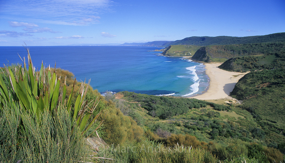 Beautiful sandy Garie Beach and green hills and coastline viewed from North Garie Head in the Royal National Park, Australia.