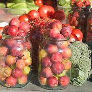 Close-up of plums in a jar at the market<br /> Klaipeda, Lithuania<br /> c. Ellen Rooney