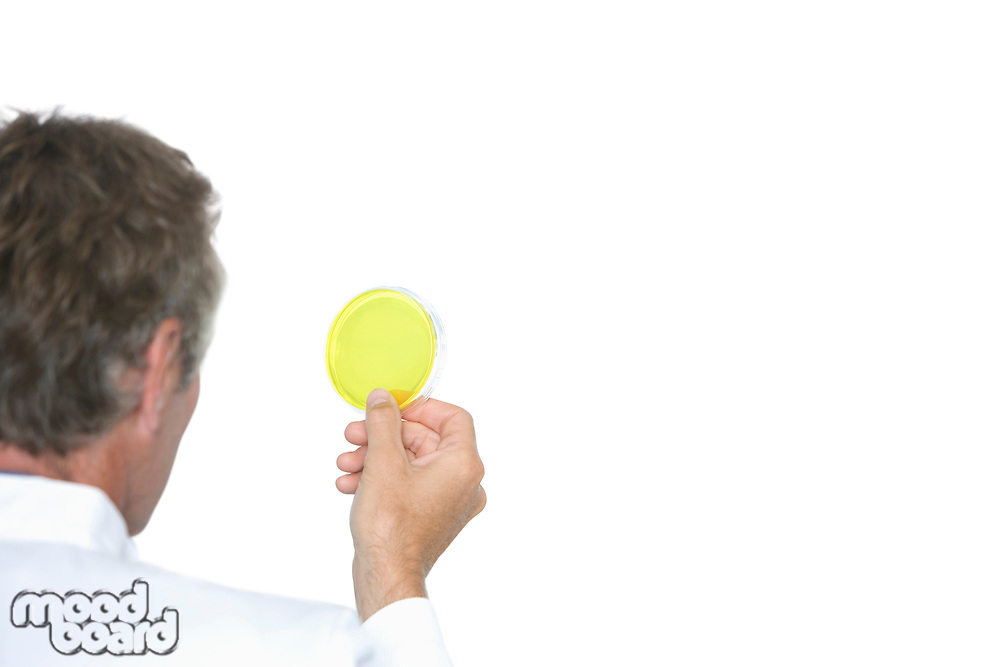 Cropped view of lab worker examining petri dish against white background