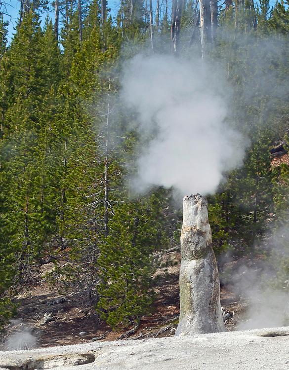 natural smokestack, Yellowstone National Park