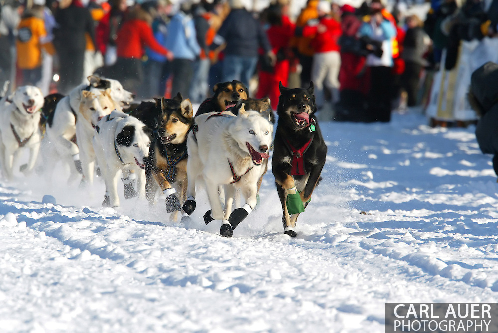 3/4/2007:  Willow, Alaska -  The dogs of Veteran Gerald Sousa of Talkeetna, AK race across the frozen ice of Willow Lake at the beginning of the 35th Iditarod Sled Dog Race
