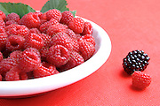 Berries on plate - studio shot