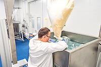 Chaque annee, quelque 50 000 tonnes de produits chimiques chlores sont deversees dans les eaux fran&ccedil;aises au nom de l&rsquo;assainissement.<br /> L&rsquo;entreprise lyonnaise Amoeba a trouve un nouveau moyen plus efficace, plus ecologique et plus economique de traiter les eaux: l&rsquo;utilisation d&rsquo;un agent biologique eradiquant les legionelles et les amibes libres telles que Hartmannella et Acanthamoeba.A la place de produits chimiques comme le chlore, elle preconise d&rsquo;utiliser un biocide , Willaertia magna C2c Makyla, predateur naturel des bacteries presentes dans l&rsquo;eau. <br /> Cette bacterie decouverte dans les eaux thermales d'Aix les Bains a ete decrite pour la premiere fois en 1984. Tres presente dans les eaux, on la trouve egalement dans le sol jusqu&rsquo;a une profondeur de 50 centimetres. <br /> Dans&nbsp; l'univers impitoyable de son environnement microbien, la bacterie s&rsquo;est fait sa place en detruisant d&rsquo;autres bacteries.<br /> Willaertia magna C2c Maky s&rsquo;attaque en particulier a plusieurs especes de legionelles, a des amibes et a de nombreuses bacteries pathogenes pour l&rsquo;homme. <br /> Ces bacteries se rencontrent notamment dans les&nbsp; circuits aero-refrigerants de nombreuses industries &nbsp;ou de l&rsquo;eau de process doit etre refroidie en grandes quantites. <br /> Ces circuits sont des milieux favorables a la proliferation de Pseudomonas, de Listeria et de Klebsiella.<br />   <br /> Willaertia magna est une amibe thermophile (temperature optimale de croissance : 43&deg; C) mesurant de 50 &agrave; 100 &micro;m de diametre pour sa forme trophozoite, et de 18 &agrave; 21&micro;m de diametre lorsqu'elle est enkystee. Le genre Willaertia a ete decrit pour la premiere fois par de Jonckheere en 1984.