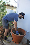 Preparing the pot that will hold my about-to-be transplanted fig tree.
