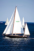 Golden Eye racing in the Museum of Yachting Classic Yacht Regatta.