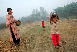BANGLADESH SIRAJGANJ RADHUNIBARI 30JAN07 - Children on an errand walk through the countryside near the Jamuna river area, traditionally prone to flooding during the Monsoon season...jre/Photo by Jiri Rezac..© Jiri Rezac 2007..Contact: +44 (0) 7050 110 417.Mobile:  +44 (0) 7801 337 683.Office:  +44 (0) 20 8968 9635..Email:   jiri@jirirezac.com.Web:    www.jirirezac.com..© All images Jiri Rezac 2007 - All rights reserved.