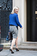 Downing Street, London, UK. 4th November 2014. Government ministers attend Downing Street for their weekly Cabinet Meeting. Pictured:  Secretary of State for Environment  Food and Rural Affairs -  Liz Truss.