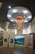 Gaint jellyfish on display at the  Beijing Museum of Natural History in China.