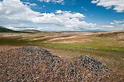 Basalt outcropping at Zumwalt Prairie Nature Conservancy Preserve in northeast Oregon