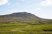 Carboniferous limestone scenery, Ingleborough Hill, Yorkshire Dales national park, England, UK