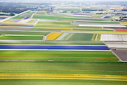 Nederland, Zuid-Holland, Hillegom, 16-04-2008; Zilker polder, bollenstreek tussen Hillgom / de Zilk en Noordwijkerhout; percelen met bollen, gedeeltelijk in  bloei (narcissen en hyacinten); zandgrond, bollenveld, geestgrond, bloementeelt, bollenteelt, narcis, bol, hyacint*, patroon,ritme, kleur, abstract; aerial photo, bulbs, flower bulb, flowerbed , bulbfields, bloom, flowering time, toerism, attraction..luchtfoto (toeslag); aerial photo (additional fee required); .foto Siebe Swart / photo Siebe Swart