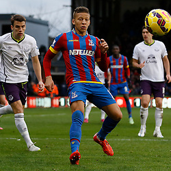 Crystal Palace v Everton | Premier League | 31 January 2015