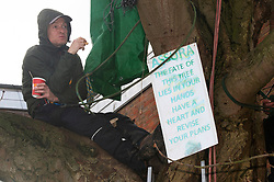 © Licensed to London News Pictures. 29/11/2018. Tonbridge, UK.Tea and biscuits for protester. Local resident protesters in Tonbridge, Kent have been sitting up a tree for a week to stop it being chopped down to make way for a new medical Centre in River Lawn Road. Developers say the horse chestnut tree is dying anyway but the local group want it saved.Photo credit: Grant Falvey/LNP