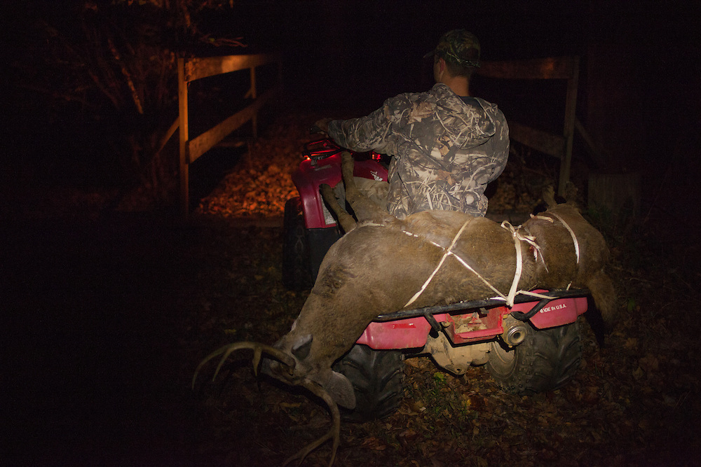 Mature buck strapped to a four wheeler.