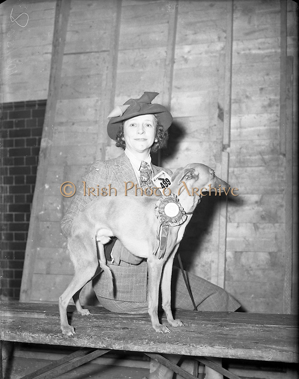 """28/12/1952<br /> 12/28/1952<br /> 28 December 1952<br /> Dog Show, Dublin Society at Portabello Barracks, Miss C.A. Dorrity, 4 Seaview Terrace, Ailesbury Road, Dublin, with her Best of Breed Whippet """"Fleeting Flagman"""""""