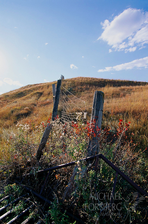 Boundary fence between Custer State Park and Wind Cave National Park, South Dakota.