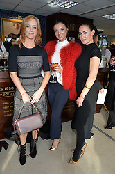 NEWBURY, ENGLAND 26TH NOVEMBER 2016: Left to right, Sarah-Jane Mee, Lucy Mecklenburgh and Kirsty Gallacher at Hennessy Gold Cup meeting Newbury racecourse Newbury England. 26th November 2016. Photo by Dominic O'Neill