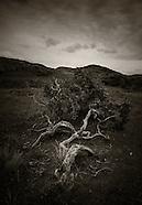 Ireland Dark Landscapes