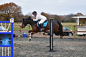 30 - 03rd Dec - Christmas Show Jumping