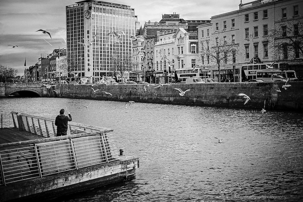 Man feeding the seagulls by the Liffey in Dublin