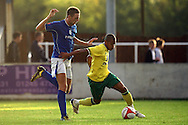 Rob Swaine of Billericay and Simeon Jackson of Norwich in action during a pre season friendly at New Lodge Stadium, Billericay...Picture by Paul Chesterton/Focus Images Ltd.  07904 640267.4/8/11