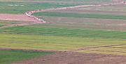 Fertile field near Halabiya Fortress, (Roman and Byzantine) by the Euphrates, Syria