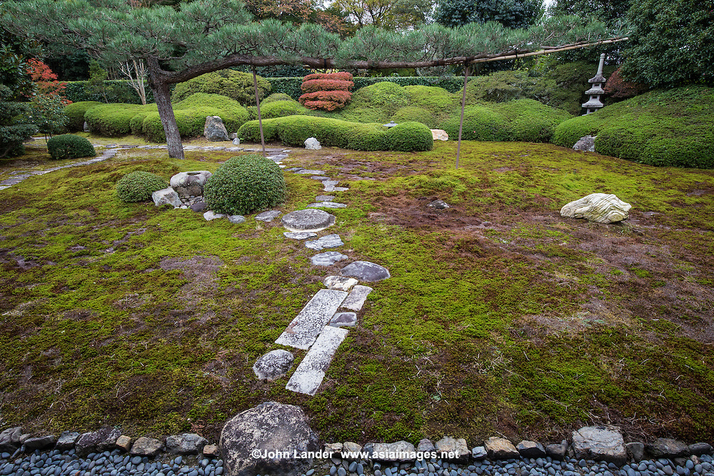 Ikkai-in is a quiet and has its own unique character and particularities. The most obvious of which is the central pine tree and its long lone branch supported by a couple of poles. This tree is the structuring element of the garden and can serve as a window for the other elements in the background: two stone lanterns, a red or two lost among the satsuki rhododendrons and, finally, a stepping stone path.