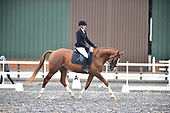 60 - 07th Oct - Dressage