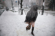TOKYO, JAPAN - 14 JANUARY - Oimachi, Strong storm cover the steet of tokyo with a thick snow. Tokyo 2013 [FR] Une tempete de neige s'est abatue sur la ville de Tokyo déposant un épais manteau