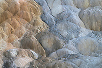 Colorful travertine deposits caused by thermophilic bacteria, Mammtoth Hot Springs, Yellowstone National Park
