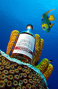 Seven Fathoms Rum bottle shot at seven fathoms depth, Grand Cayman.  Queen Angelfish was digitally inserted by Courtney Platt.