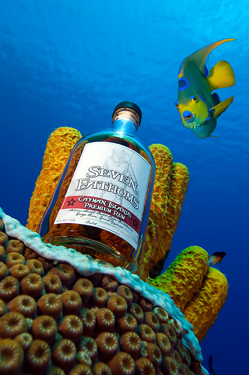 Seven Fathoms Rum bottle shot at seven fathoms depth, Grand Cayman.  Queen Angelfish was digitally inserted by Courtney Platt.