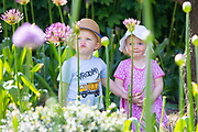 UNITED KINGDOM, London: 16 May 2019 <br /> Friends Freddie Lynne and Martha White enjoy the flowers in Royal Botanical Gardens Kew new Children's Garden which officially opens on the 18th of May 2019. The impressive and colourful space covers 10,000 square metres and is designed around the elements that plants need to survive.<br /> Rick Findler / Story Picture Agency