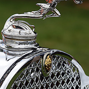 The emblem on a 1928 Packard 4-43 at the Greenwich Concours d'Elegance Festival of Speed and Style featuring great classic vintage cars. Roger Sherman Baldwin Park, Greenwich, Connecticut, USA.  2nd June 2012. Photo Tim Clayton