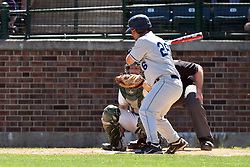14 April 2013:  Greg Struck bats, A.J. Nathan catches, Steve Jones umpires during an NCAA division 3 College Conference of Illinois and Wisconsin (CCIW) Baseball game between the Elmhurst Bluejays and the Illinois Wesleyan Titans in Jack Horenberger Stadium, Bloomington IL