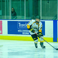 5th year forward Kylee Kupper (21) of the Regina Cougars in action during the Women's Hockey Home Game on October 21 at Co-operators Arena. Credit Matt Johnson/©Arthur Images 2017