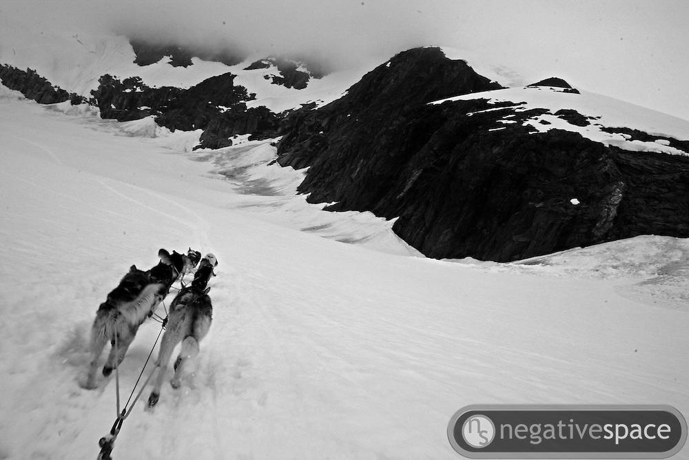 Following the dog sled team, Mendenhall Glacier, Juneau, Alaska