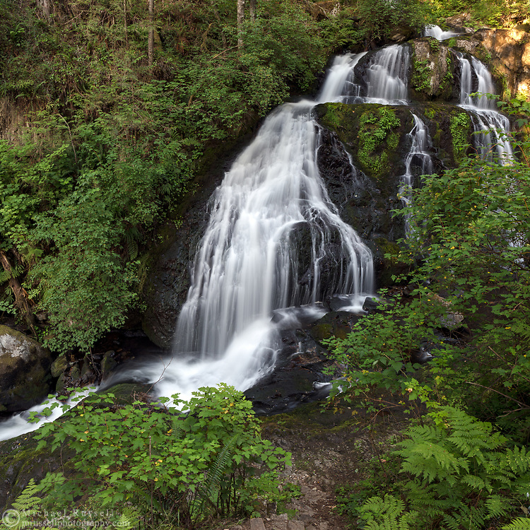 Steelhead Falls along Steelhead Creek in the Hayward Lake Recreational Area in Mission, British Columbia, Canada