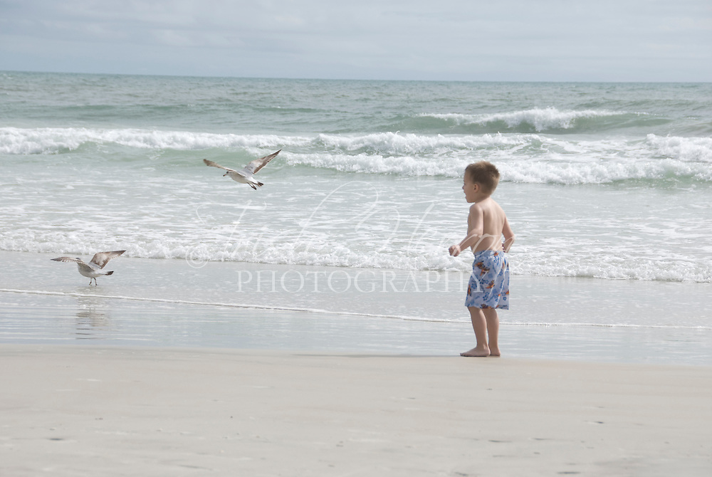 A young boy shouts at two gulls at the beach.