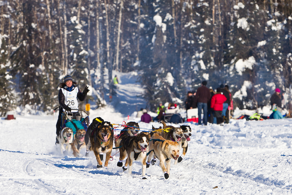 Musher Michelle Phillips competing in the 40th Iditarod Trail Sled Dog Race on Long Lake after leaving the Willow Lake area at the restart in Southcentral Alaska. Afternoon. Winter.