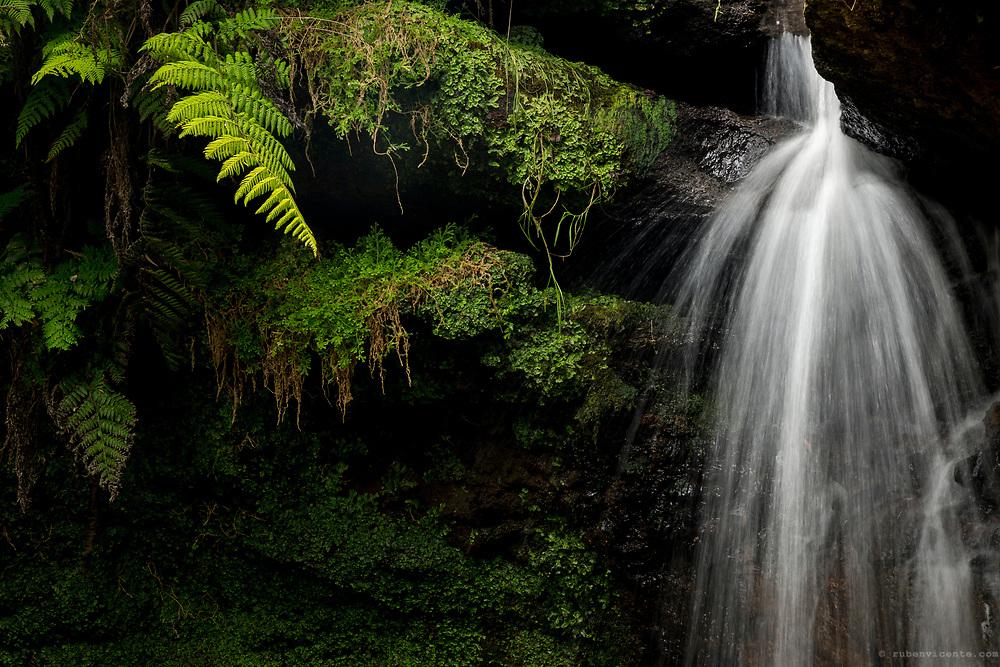 Cascade at Ribeira da Agualva. Terceira, Azores, Portugal
