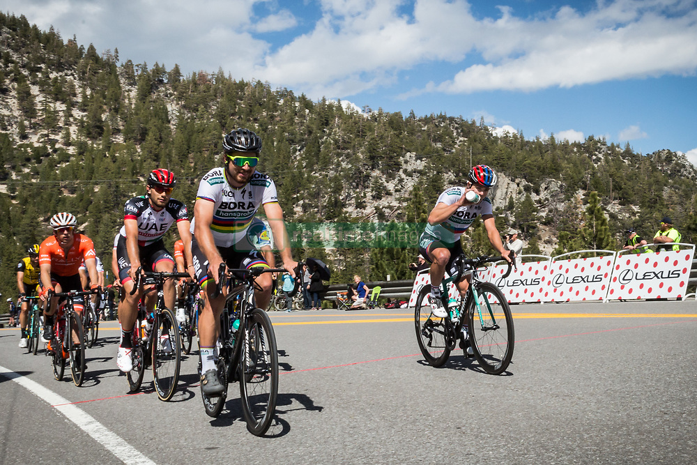 May 18, 2018 - Nevada, U.S - PETER SAGAN (SVK), team BORA - hansgrohe (GER), leads a small group of riders at Daggett Summitt, 7334 ft, along Kingsbury Grade Rd., Nevada, near South Lake Tahoe during the Men's Stage 6 of the Amgen Tour of California, on Friday, May 18, 2018. (Credit Image: © Tracy Barbutes via ZUMA Wire)