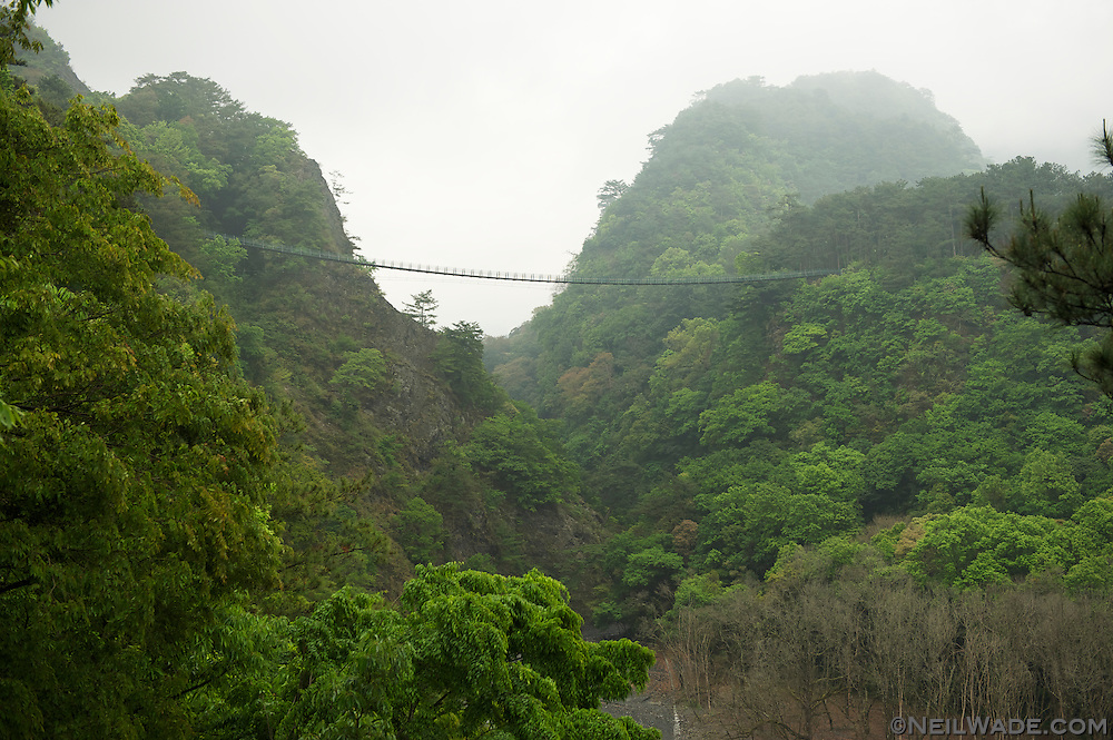 Aowanda Forest Park has a very long suspension bridge.