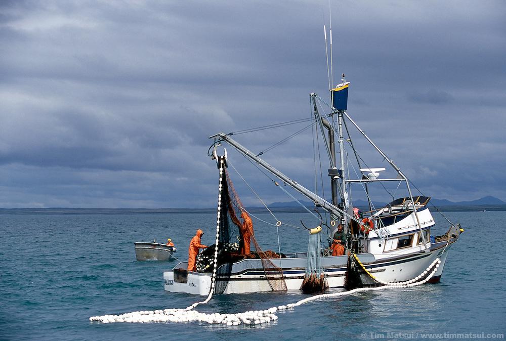 Purse-seine fishing for salmon off Kodiak Island, AK.