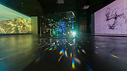 Reanimation, made from projected footage of Arctic landscapes and light refracted through dozens of hanging crystals - Joan Jonas, Tate Modern opens largest survey of pioneering performance artist's work from her five decade career. It includes an immersive gallery exhibition and live performance programme.
